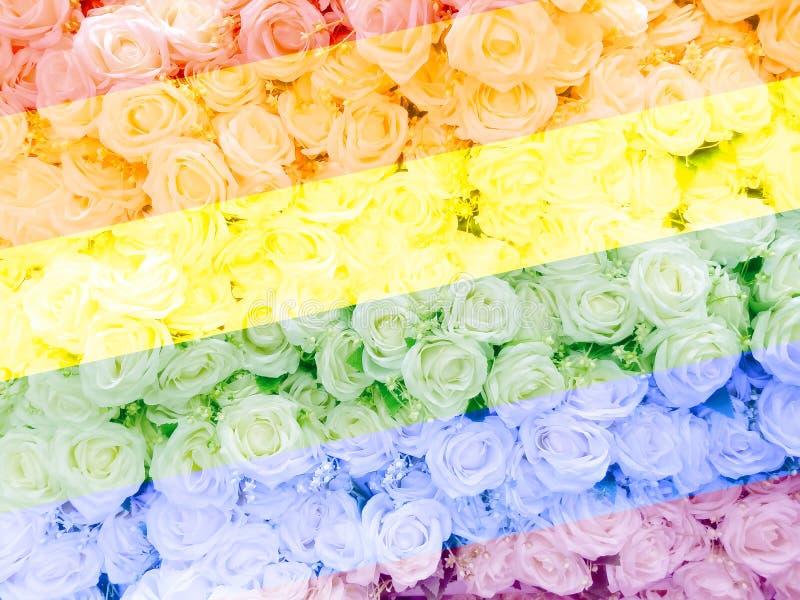 Vaag van zoete rozen in de stijl van de Regenboogkleur op zachte onduidelijk beeld bokeh textuur voor achtergrond royalty-vrije stock foto's