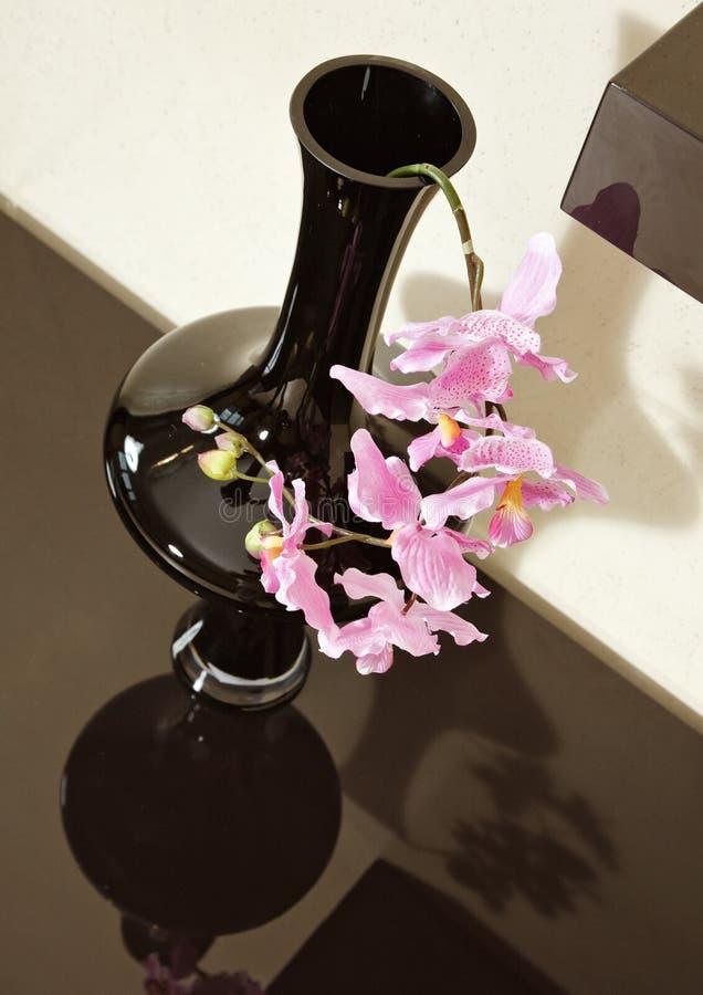 Vaas met orchideebloem op bruine plank stock fotografie