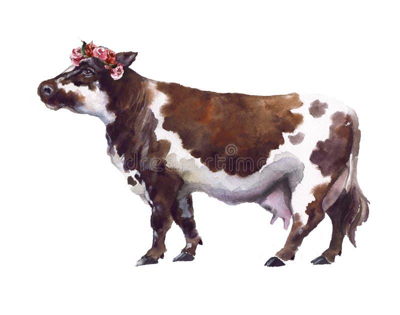 Vaca da aquarela no fundo branco ilustração do vetor