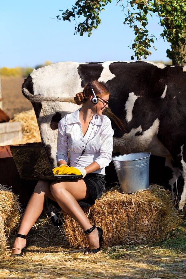 Vaca de ordeño de la mujer foto de archivo libre de regalías
