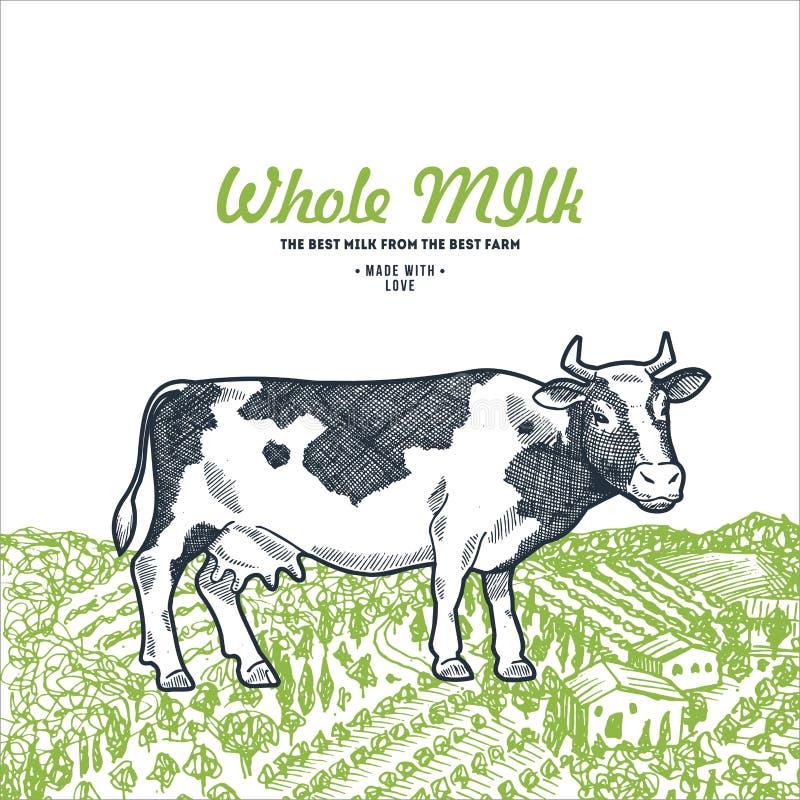 Vaca en un campo verde Plantilla del diseño de la leche Ilustración del vector ilustración del vector