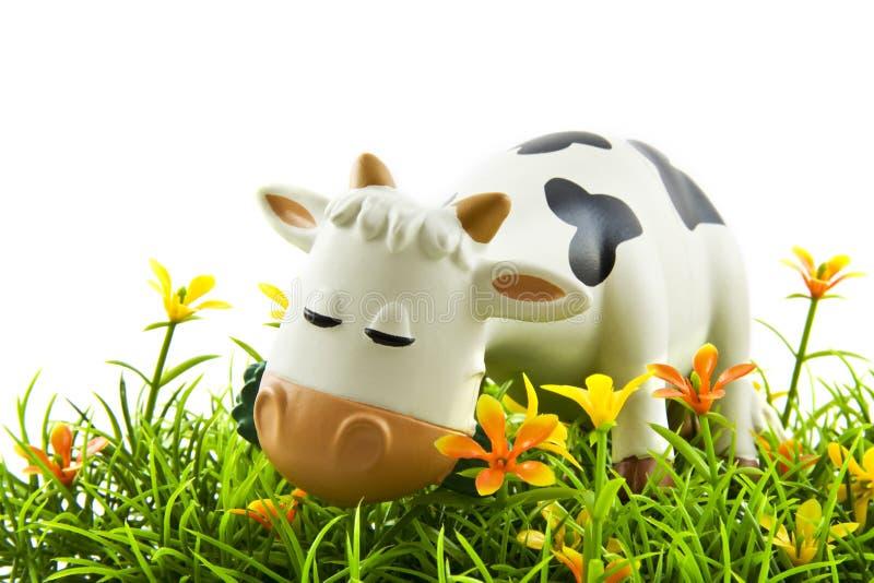 Vaca encantadora fotografia de stock