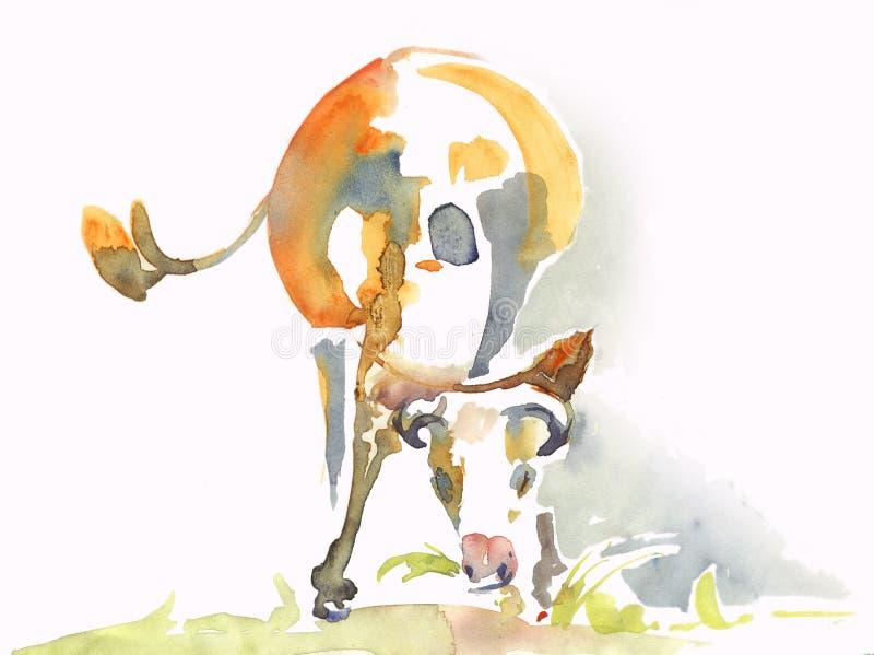 Vaca linda que come la hierba watercolor imagen de archivo libre de regalías