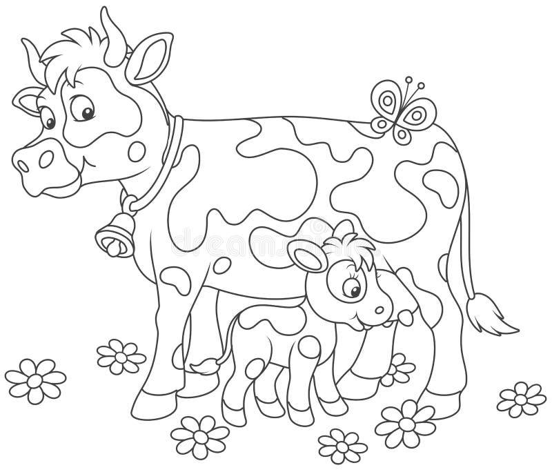 Vaca manchada que alimenta su pequeño becerro ilustración del vector
