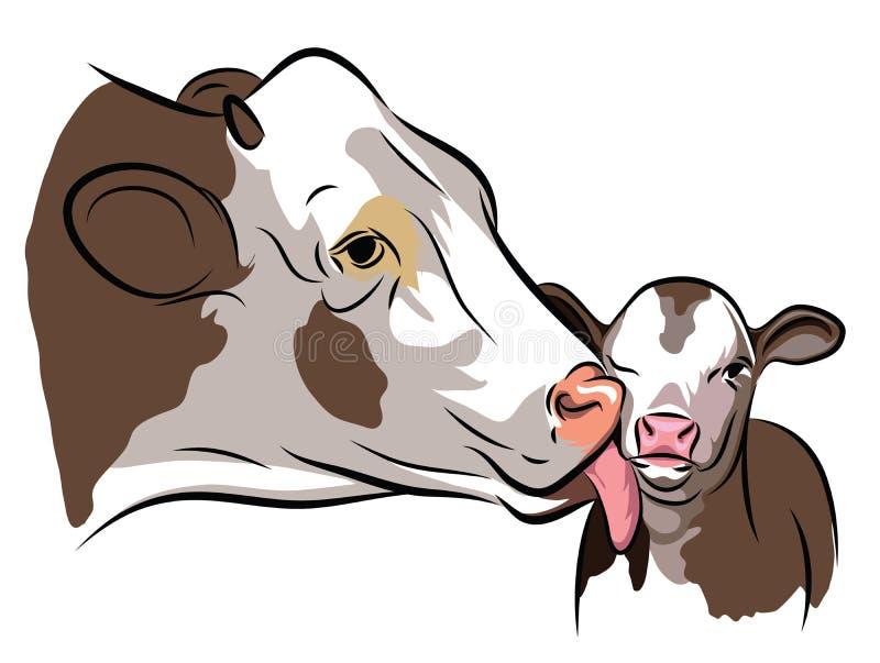 Vaca y un becerro libre illustration