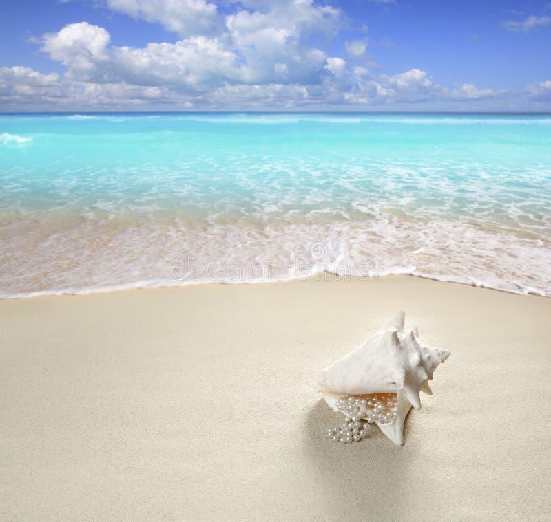 Vacaciones de verano del shell del collar de la perla de la arena de la playa imagen de archivo