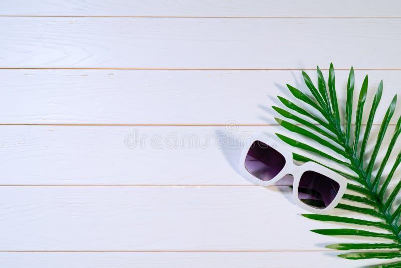 Vacaciones de verano hermosas, gafas de sol y hojas de palma en la tabla de madera blanca fotografía de archivo libre de regalías