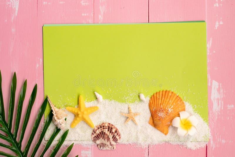 Vacaciones de verano hermosas, licencia de los accesorios de la playa, de las conchas marinas, de la arena y de la palma en el pa fotografía de archivo