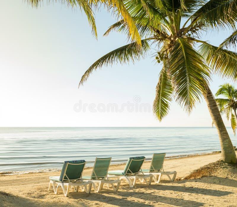 Vacaciones tropicales de la isla fotos de archivo