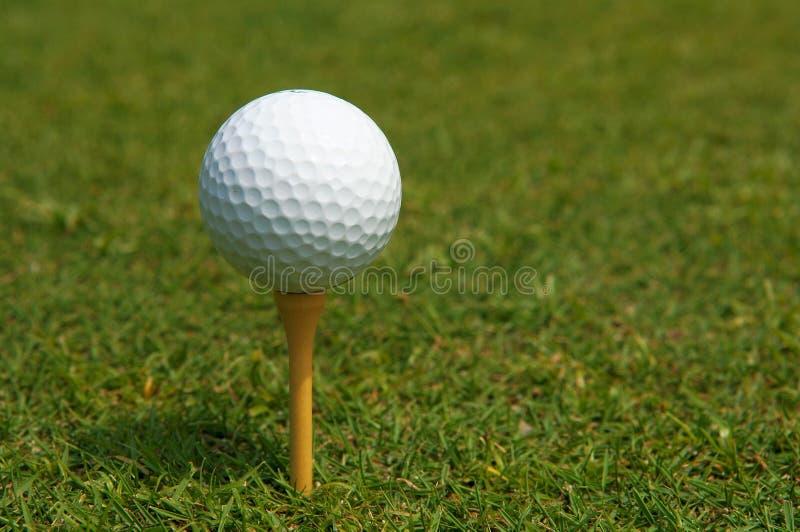 Download Vacances de golf photo stock. Image du pays, macro, lecteur - 733998