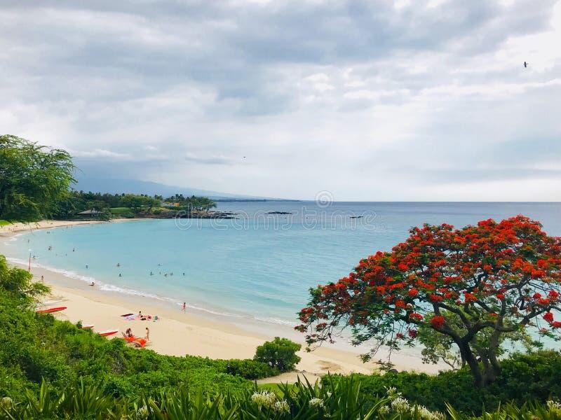 Vacances hawaïennes de plage image libre de droits
