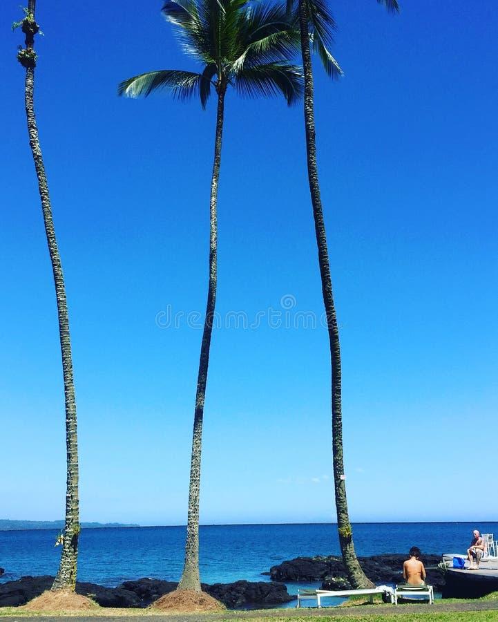 Vacances @ Hilo sur la grande île image stock