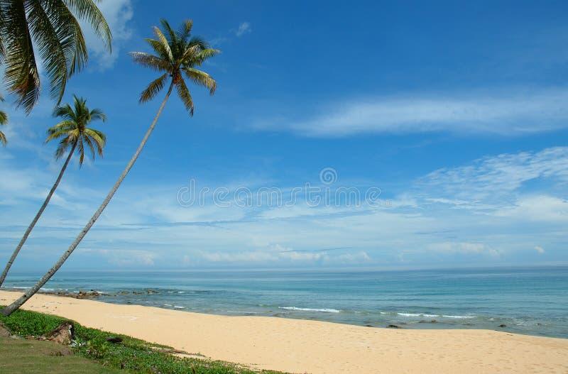 Vacances parfaites image stock