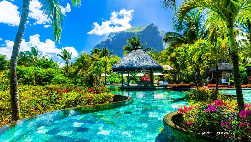 Vacances tropicales - barre de détente de piscine Île des Îles Maurice photos stock