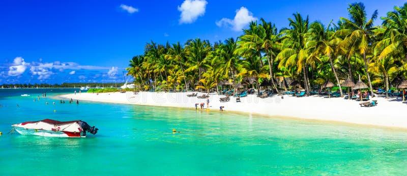 Vacances tropicales en île des Îles Maurice images stock