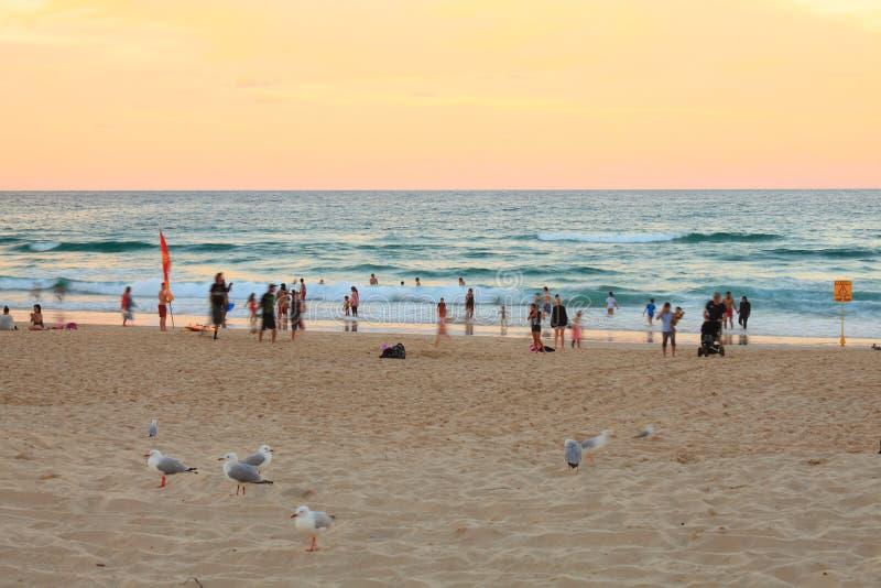 Vacanciers à la plage par coucher du soleil image stock