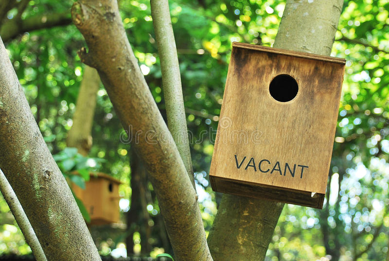 Vacant Bird House. A photo taken on a vacant bird house on a tree. Metaphor for property or housing needs. For sale or rent royalty free stock images