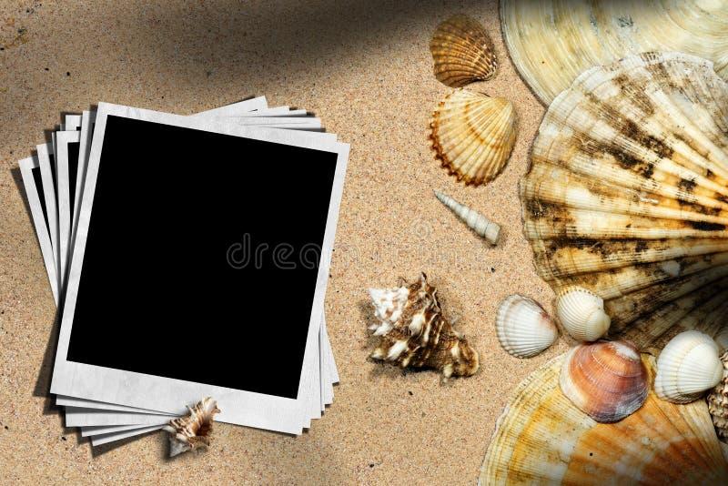 Vacanza della spiaggia - conchiglie e foto istantanee immagine stock libera da diritti