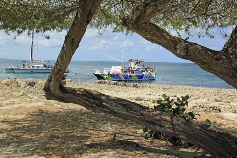 Vacanza di Aruba sul mar dei Caraibi immagine stock libera da diritti