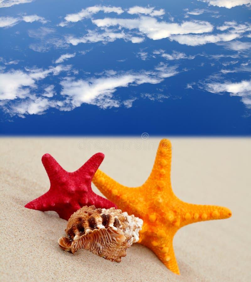 Vacanza di estate immagini stock libere da diritti