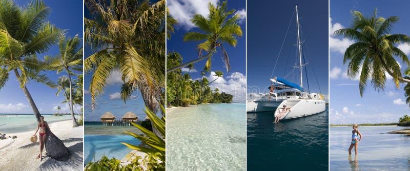 Vacanza di lusso - isole del Pacifico Meridionale immagine stock libera da diritti