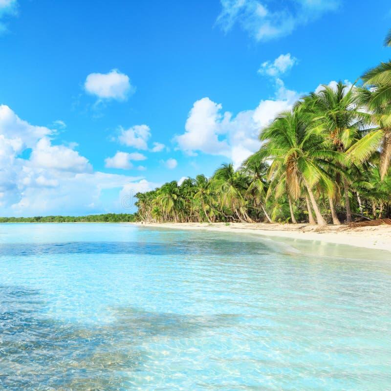 Vacanza nella Repubblica dominicana fotografie stock libere da diritti
