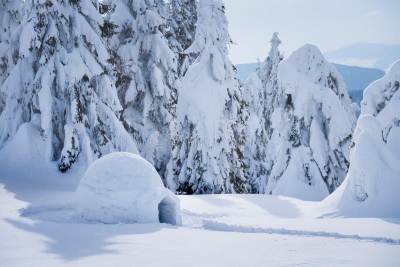 Vacanze della montagna di inverno con un iglù della neve immagine stock libera da diritti