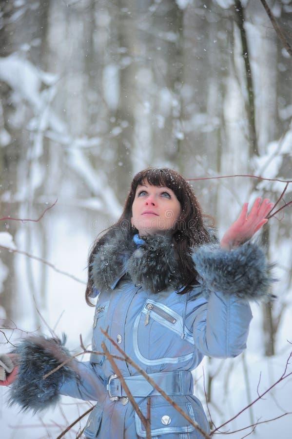 Vacanze di inverno fotografie stock
