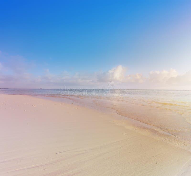 Vacanze estive; fondo tropicale della spiaggia immagine stock