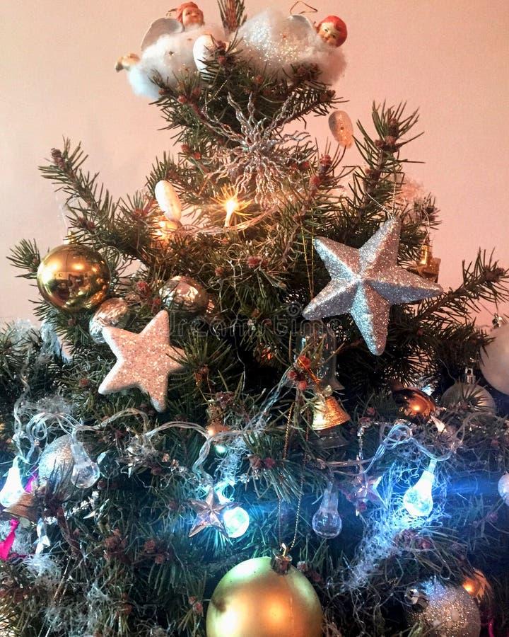 Vacanze invernali ed albero di Natale immagini stock libere da diritti