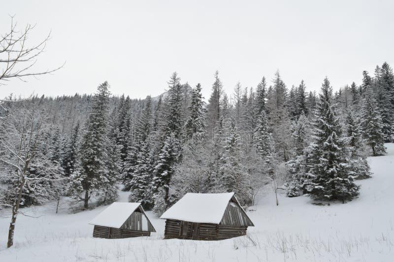 Vacanze invernali in Zakopane fotografie stock