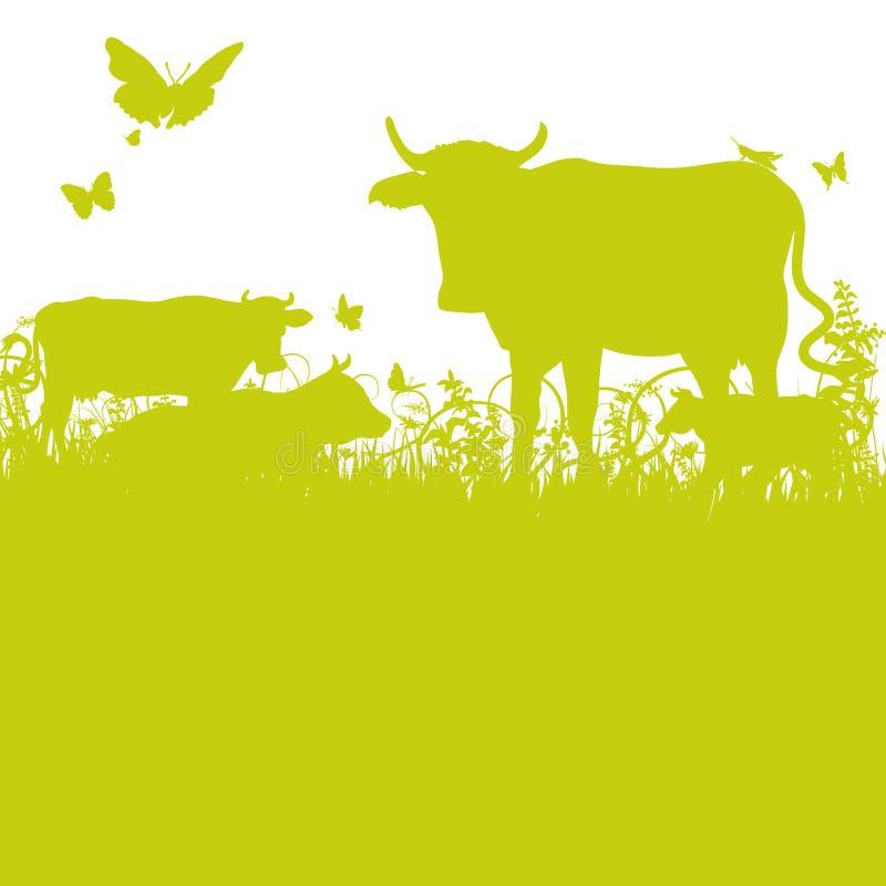 Vacas no prado ilustração do vetor