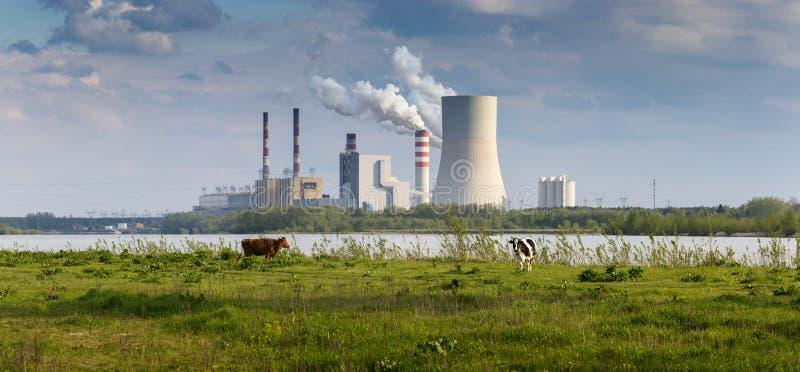 Vacas y central eléctrica imagen de archivo libre de regalías