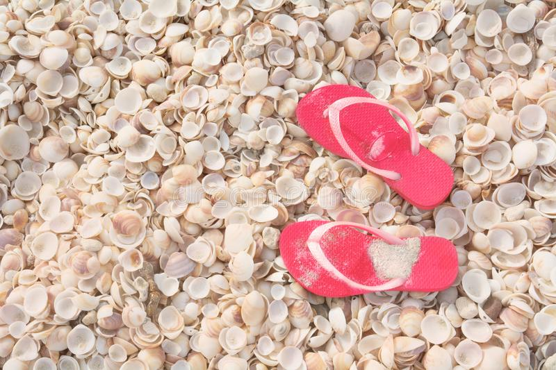 Vacation concept, seashells tropical beach background with flips flops royalty free stock photography