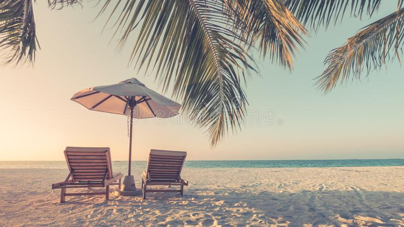 Download Beautiful Vintage Beach Landscape Tropical Nature Scene Palm Trees And Blue Sky