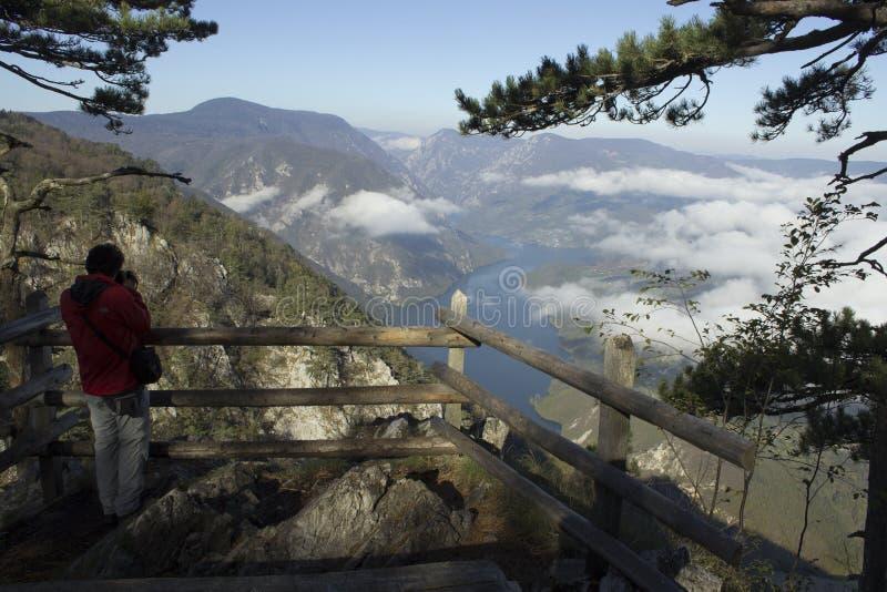Vacation on mountain Tara stock photography