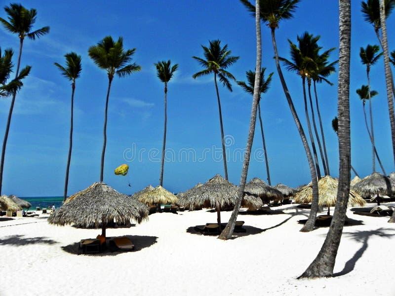 Vacation na costa das caraíbas Punta Cana, República Dominicana fotografia de stock