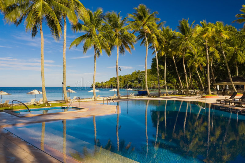 Download Vacation Resort, Pool With Palm Trees Stock Photo - Image: 7904866