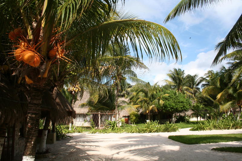 Download Vacation Resort In Reunion - Africa Stock Photo - Image: 18548292