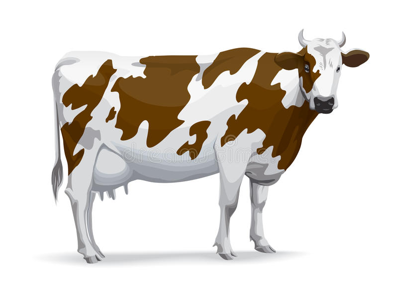 Vache illustration de vecteur