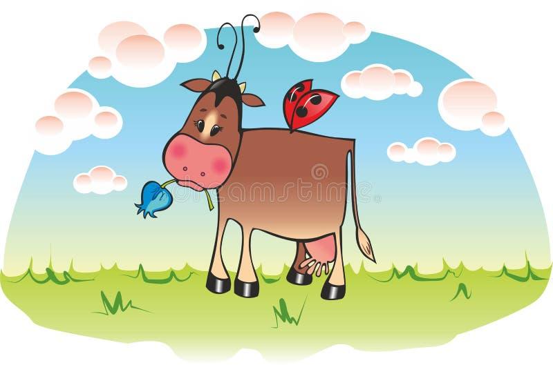Vache douce photo libre de droits