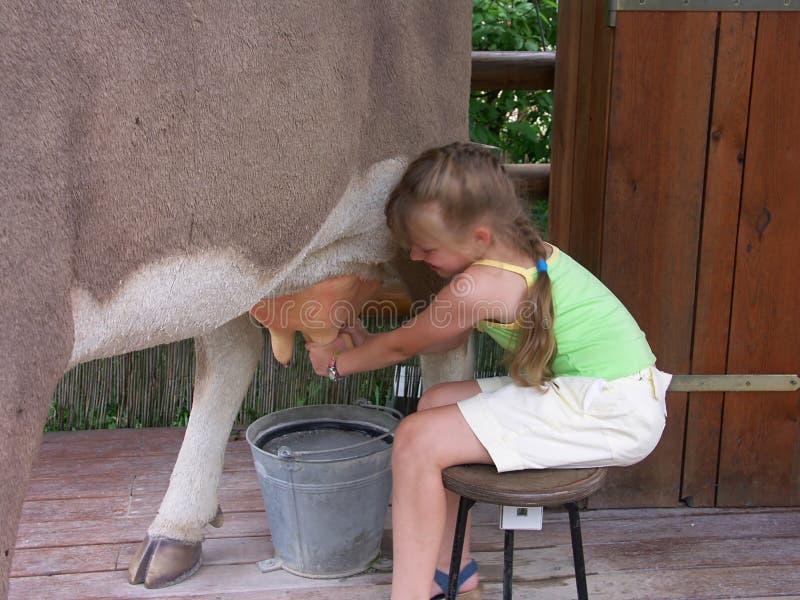 Vache et fille 02 image stock