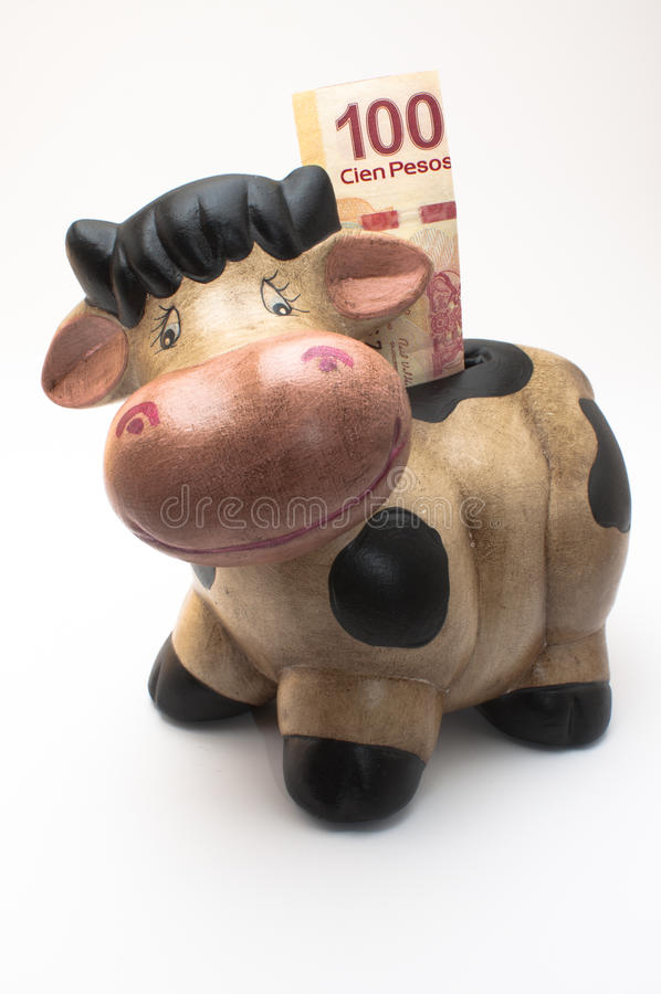 Vache MoneyBox photo stock