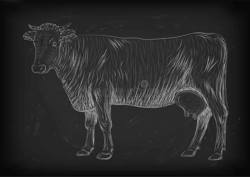 Vache, veau, en intégrale vivante de mammifères animaux mignons de museau de taureau illustration de vecteur