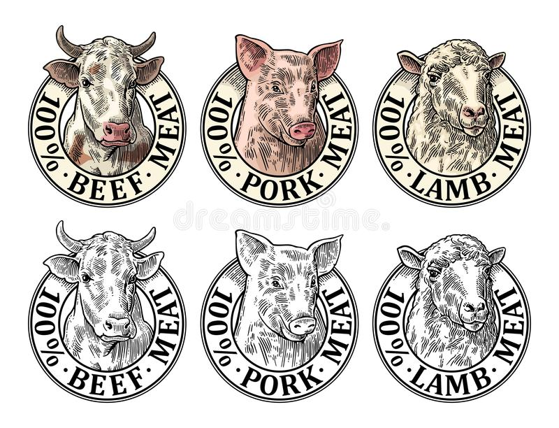 Vaches, porc, chef de moutons 100 pour cent de boeuf de porc d'agneau de lettrage de viande illustration de vecteur