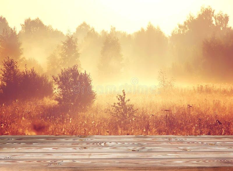 Vacie la tabla de madera en un fondo del oro con un sol naciente imágenes de archivo libres de regalías