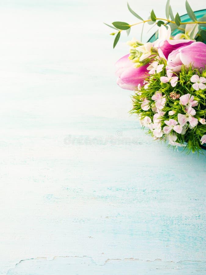 Vacie los colores en colores pastel de la tarjeta de las flores de los tulipanes de la primavera púrpura de las rosas fotografía de archivo