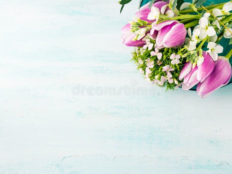 Vacie los colores en colores pastel de la tarjeta de las flores de los tulipanes de la primavera púrpura de las rosas imagen de archivo