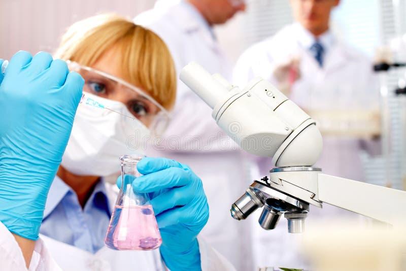 Vacina imagens de stock royalty free