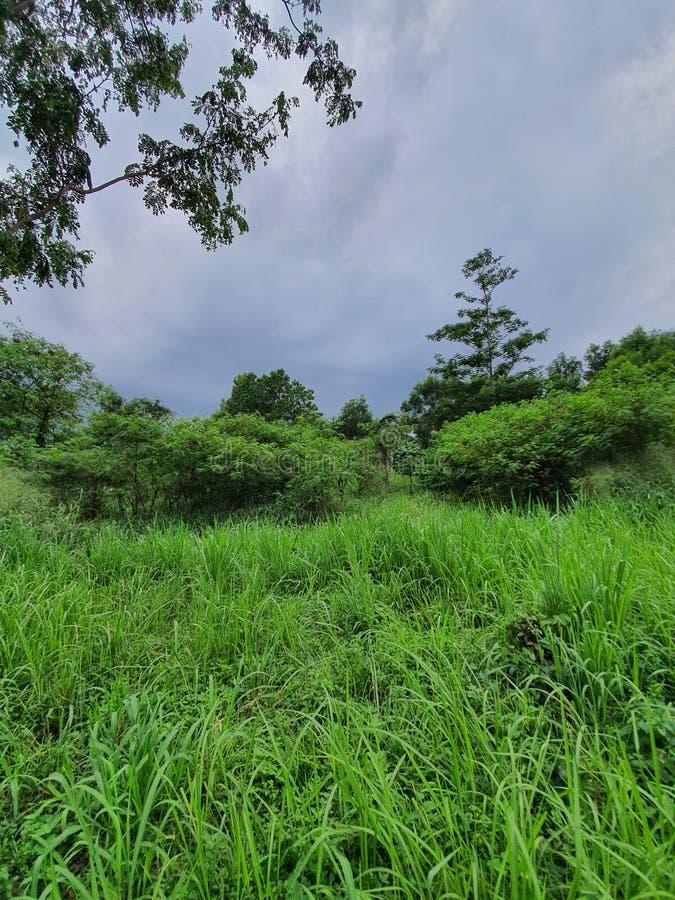 vacker syn i Sydstadens Tangerang Indonesia arkivfoto
